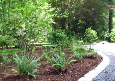 plantings3